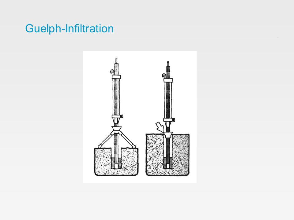 Guelph-Infiltration