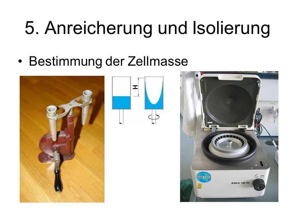 5. Anreicherung und Isolierung