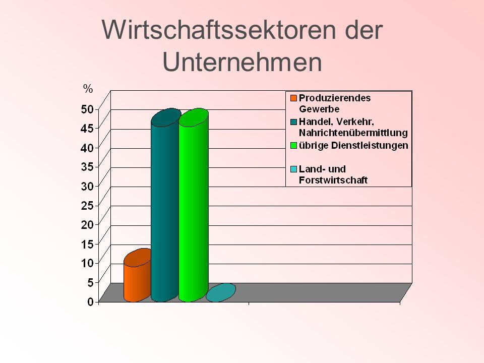 Wirtschaftssektoren der Unternehmen