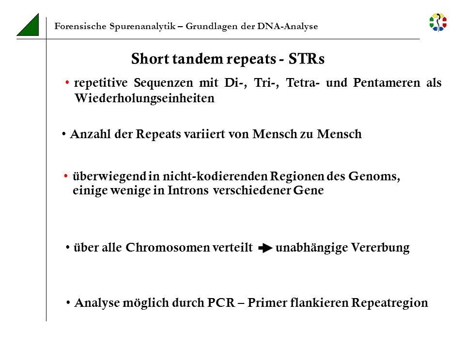 Short tandem repeats - STRs