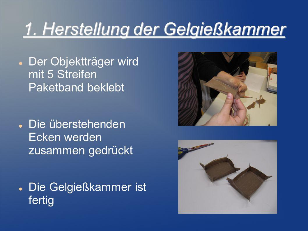 1. Herstellung der Gelgießkammer