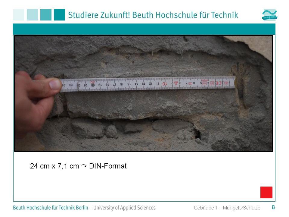 24 cm x 7,1 cm ↷ DIN-Format Gebäude 1 – Mangels/Schulze
