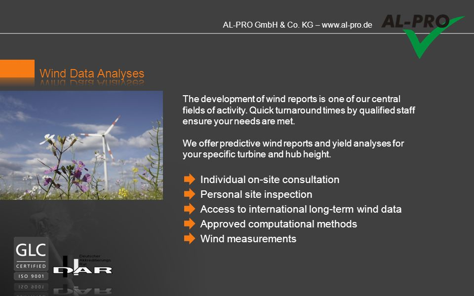 Wind Data Analyses Individual on-site consultation