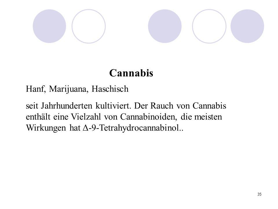 Cannabis Hanf, Marijuana, Haschisch