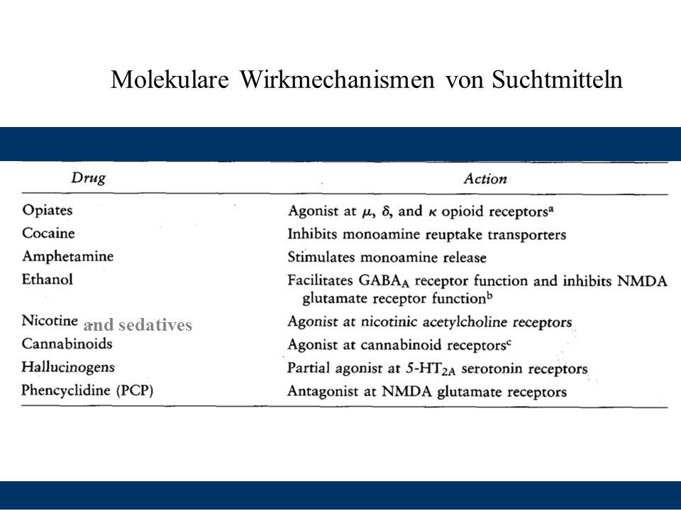 Molekulare Wirkmechanismen von Suchtmitteln