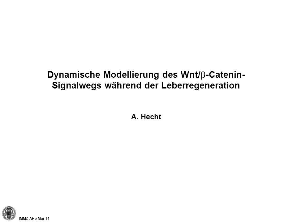Dynamische Modellierung des Wnt/b-Catenin-Signalwegs während der Leberregeneration A. Hecht