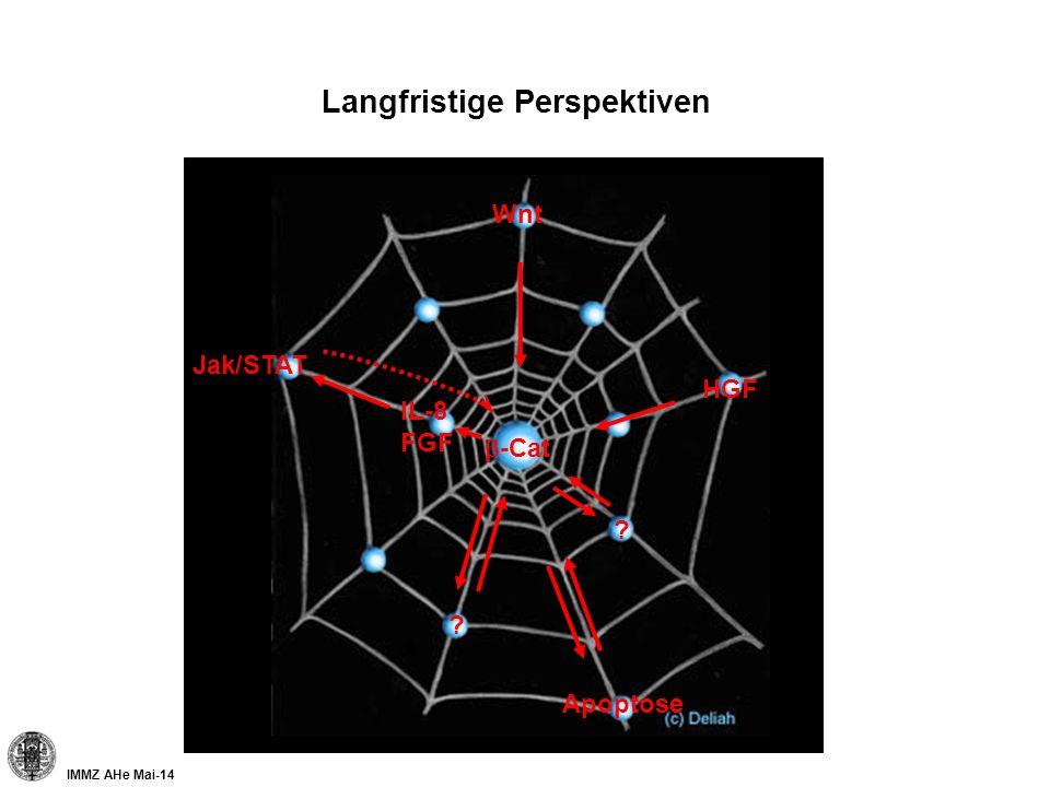 Langfristige Perspektiven