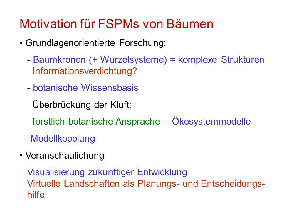 Motivation für FSPMs von Bäumen