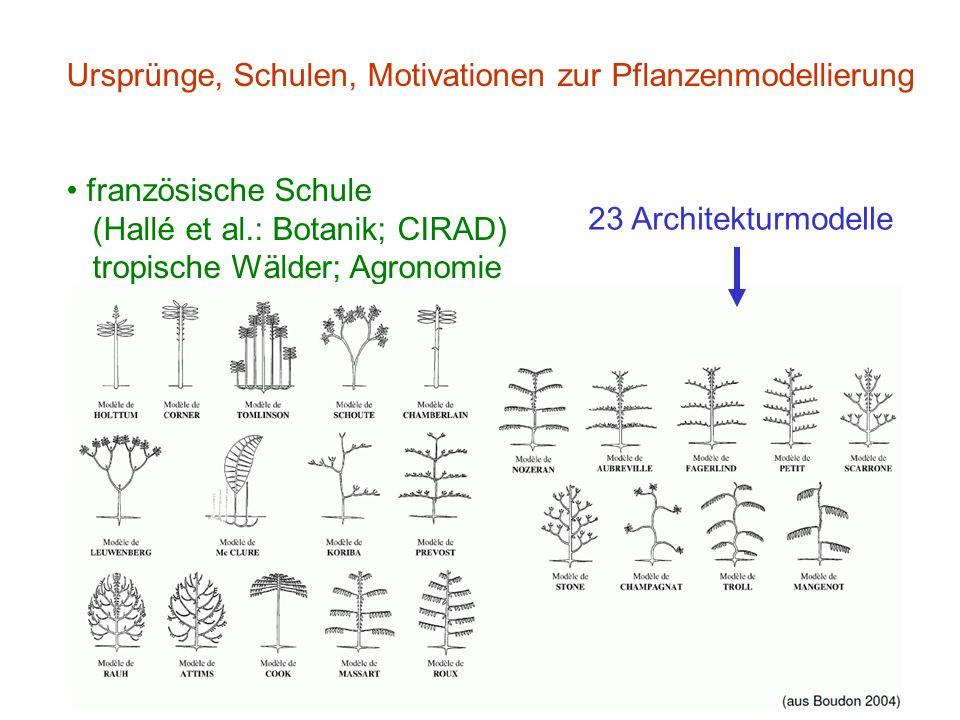 Ursprünge, Schulen, Motivationen zur Pflanzenmodellierung