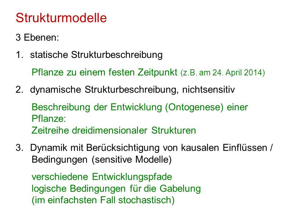 Strukturmodelle 3 Ebenen: statische Strukturbeschreibung