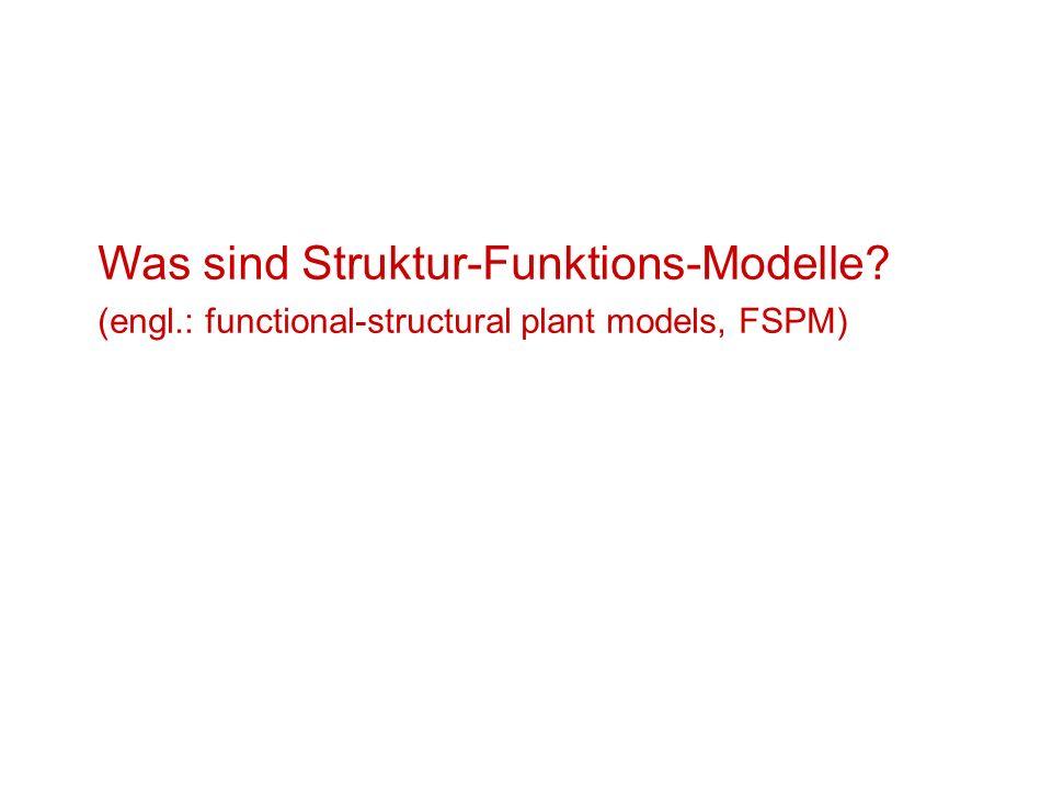 Was sind Struktur-Funktions-Modelle