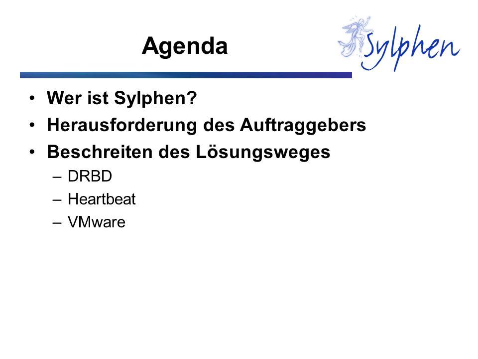 Agenda Wer ist Sylphen Herausforderung des Auftraggebers