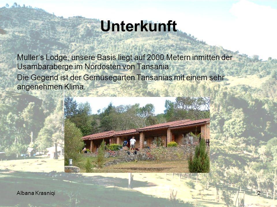 Unterkunft Muller's Lodge, unsere Basis liegt auf 2000 Metern inmitten der Usambaraberge im Nordosten von Tansania.