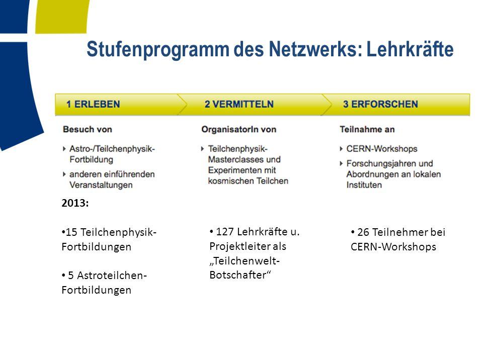 Stufenprogramm des Netzwerks: Lehrkräfte