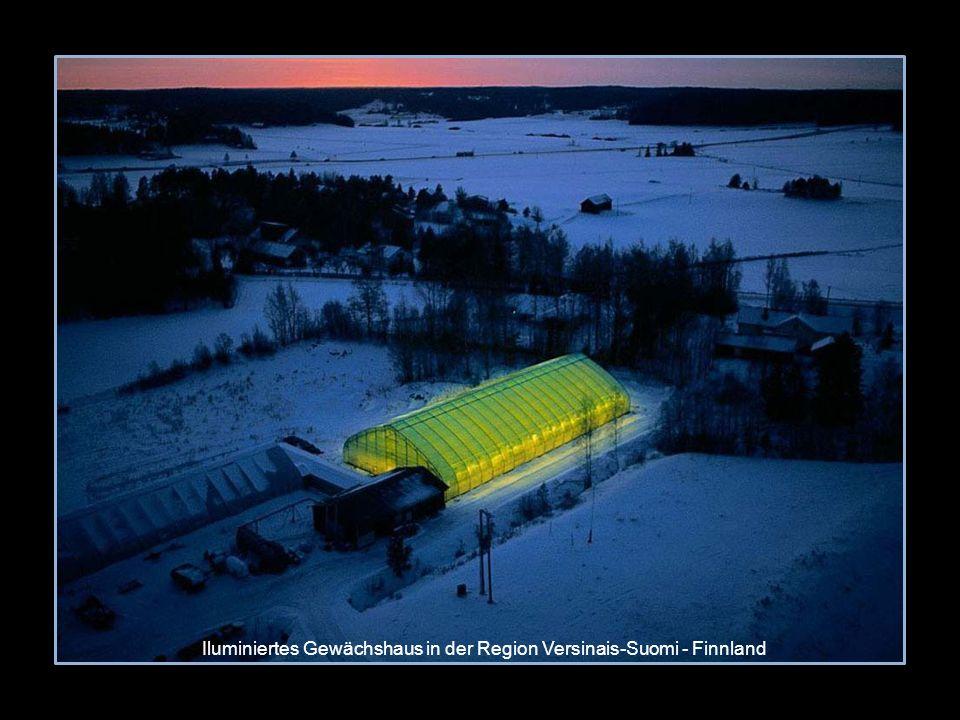 Iluminiertes Gewächshaus in der Region Versinais-Suomi - Finnland