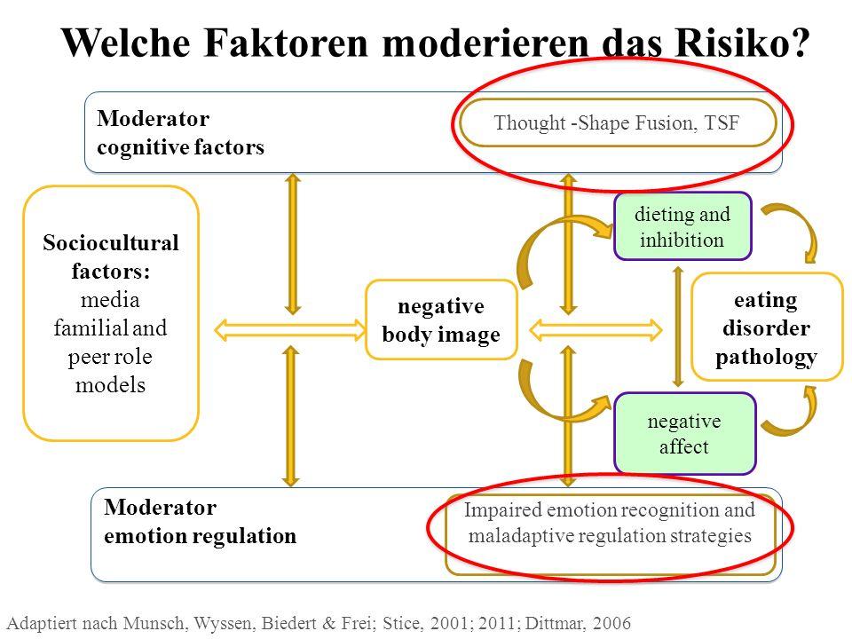 Welche Faktoren moderieren das Risiko