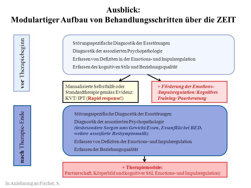 Ausblick: Modulartiger Aufbau von Behandlungsschritten über die ZEIT