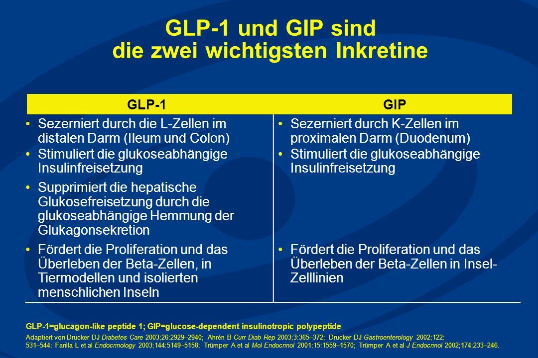 GLP-1 und GIP sind die zwei wichtigsten Inkretine