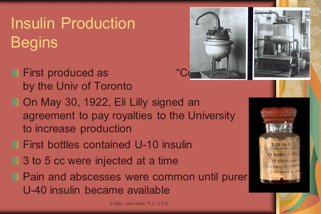 Insulin Production Begins