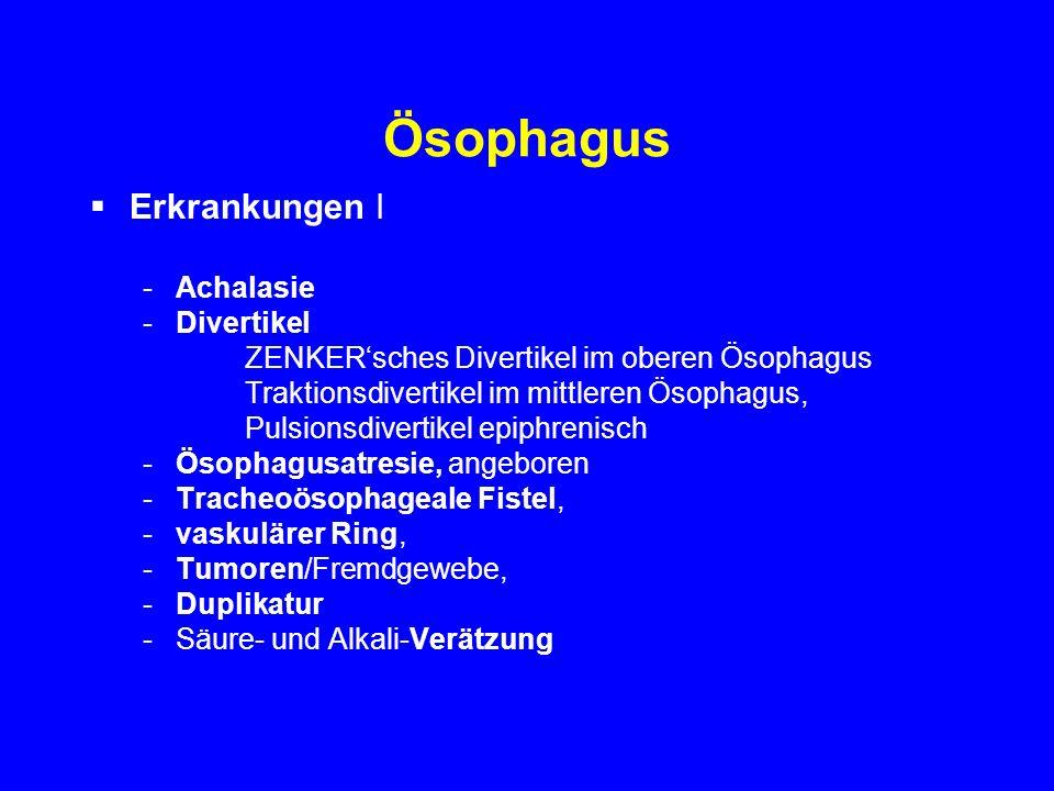 Ösophagus Erkrankungen I Achalasie Divertikel