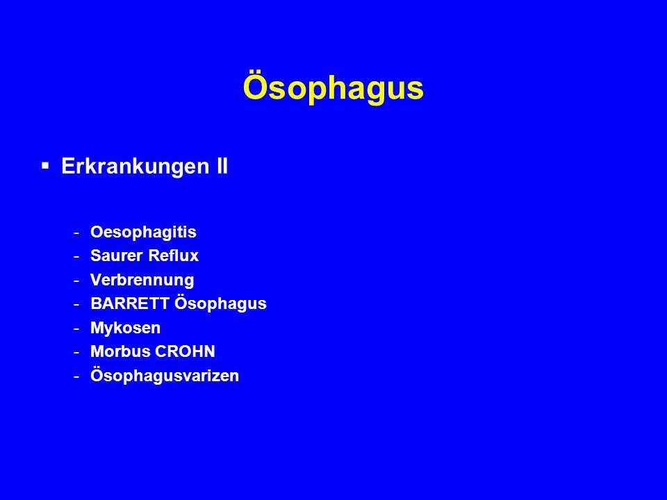 Ösophagus Erkrankungen II Oesophagitis Saurer Reflux Verbrennung