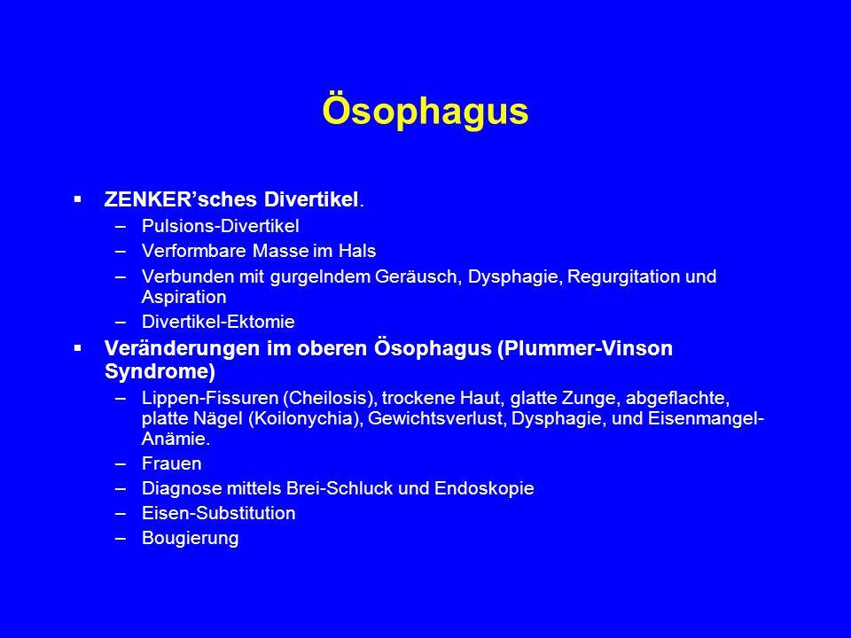 Ösophagus ZENKER'sches Divertikel.