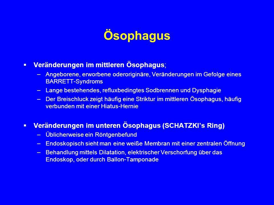 Ösophagus Veränderungen im mittleren Ösophagus;