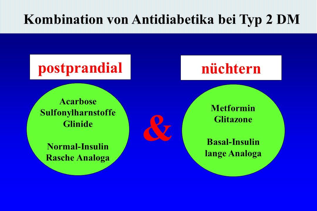 & postprandial nüchtern Kombination von Antidiabetika bei Typ 2 DM