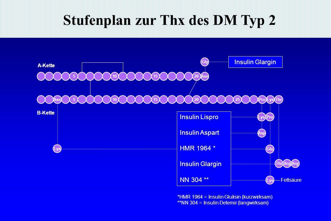 Stufenplan zur Thx des DM Typ 2