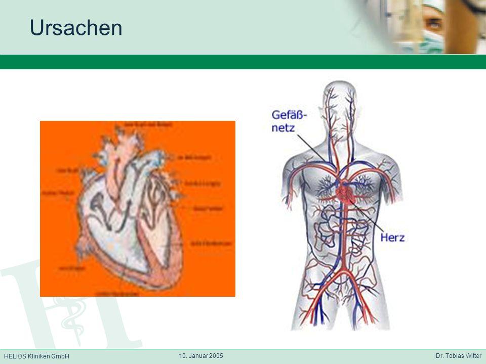 Ursachen 10. Januar 2005 Dr. Tobias Witter