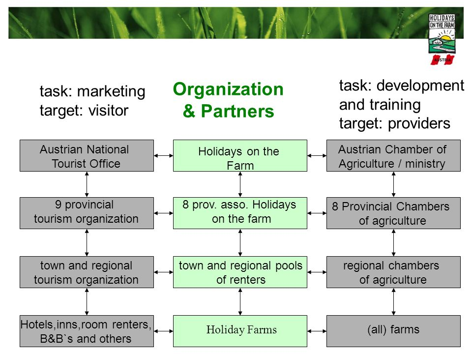 Organization & Partners