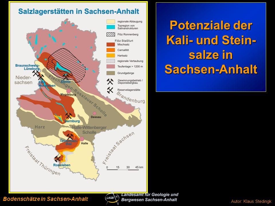 LSA Kali u. Steinsalz-Potenziale