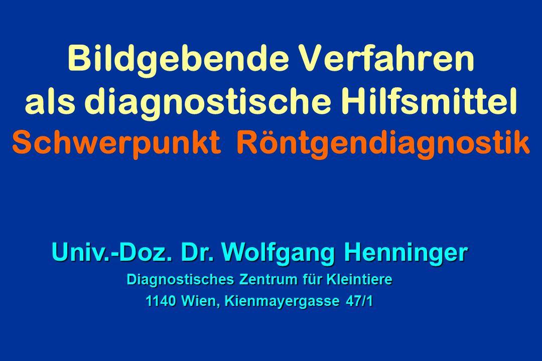 Bildgebende Verfahren als diagnostische Hilfsmittel Schwerpunkt Röntgendiagnostik