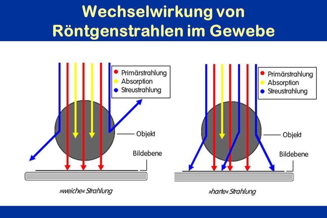 Wechselwirkung von Röntgenstrahlen im Gewebe