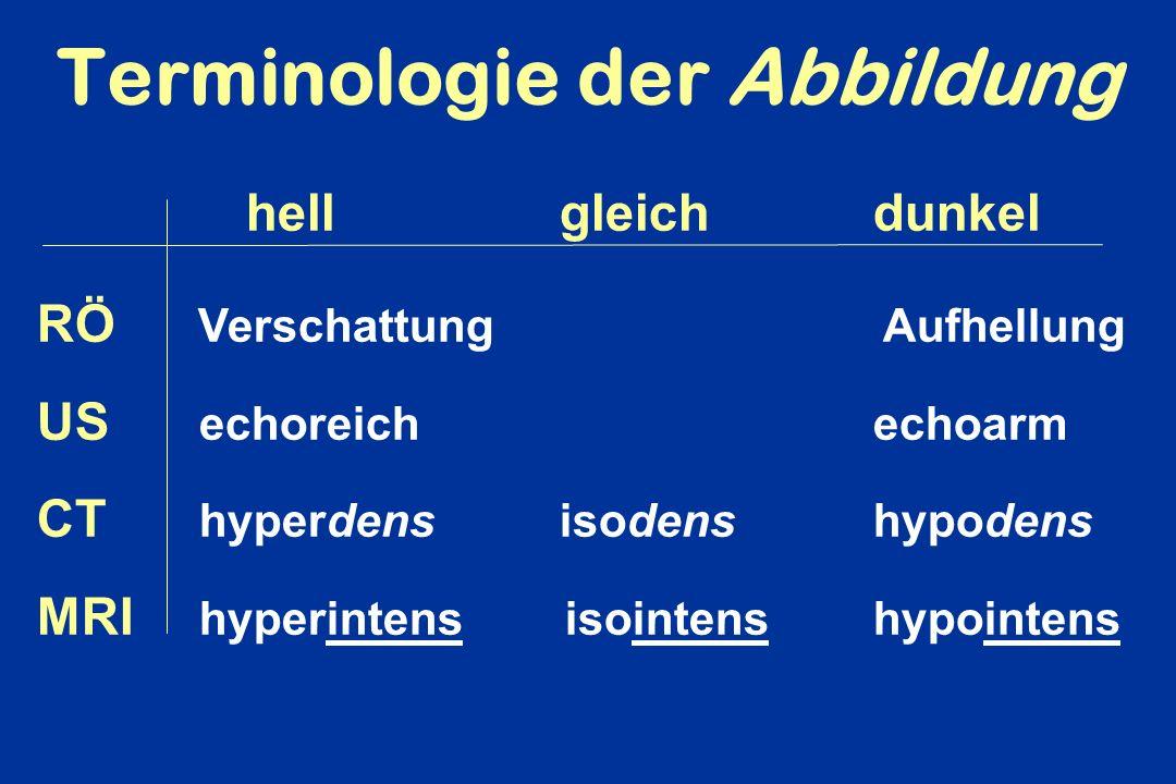 Terminologie der Abbildung