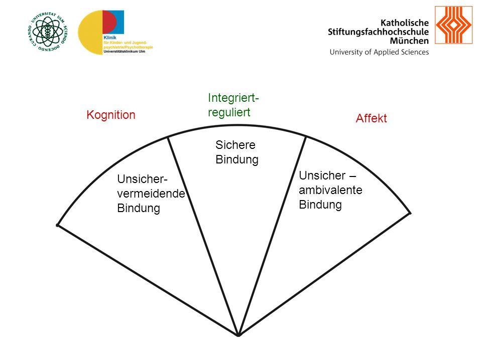 Integriert-reguliert Kognition Affekt