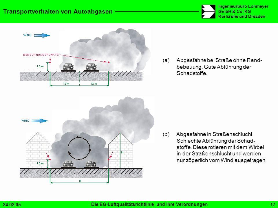 Transportverhalten von Autoabgasen