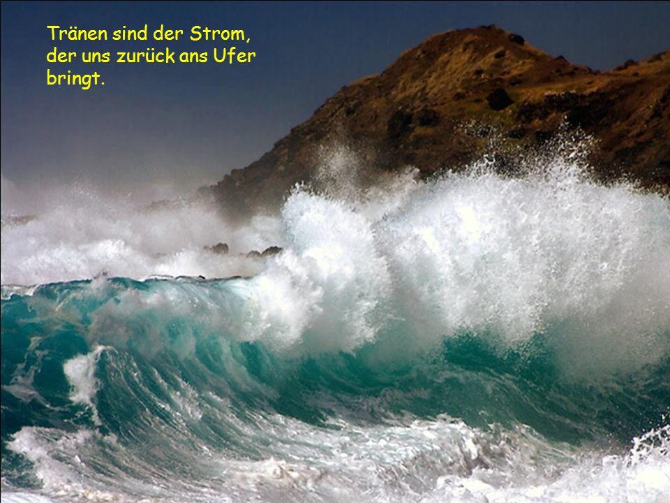 Tränen sind der Strom, der uns zurück ans Ufer bringt.
