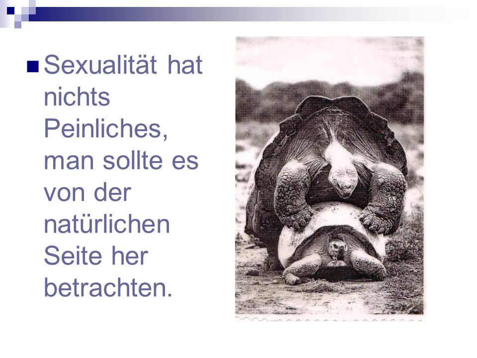 Sexualität hat nichts Peinliches, man sollte es von der natürlichen Seite her betrachten.
