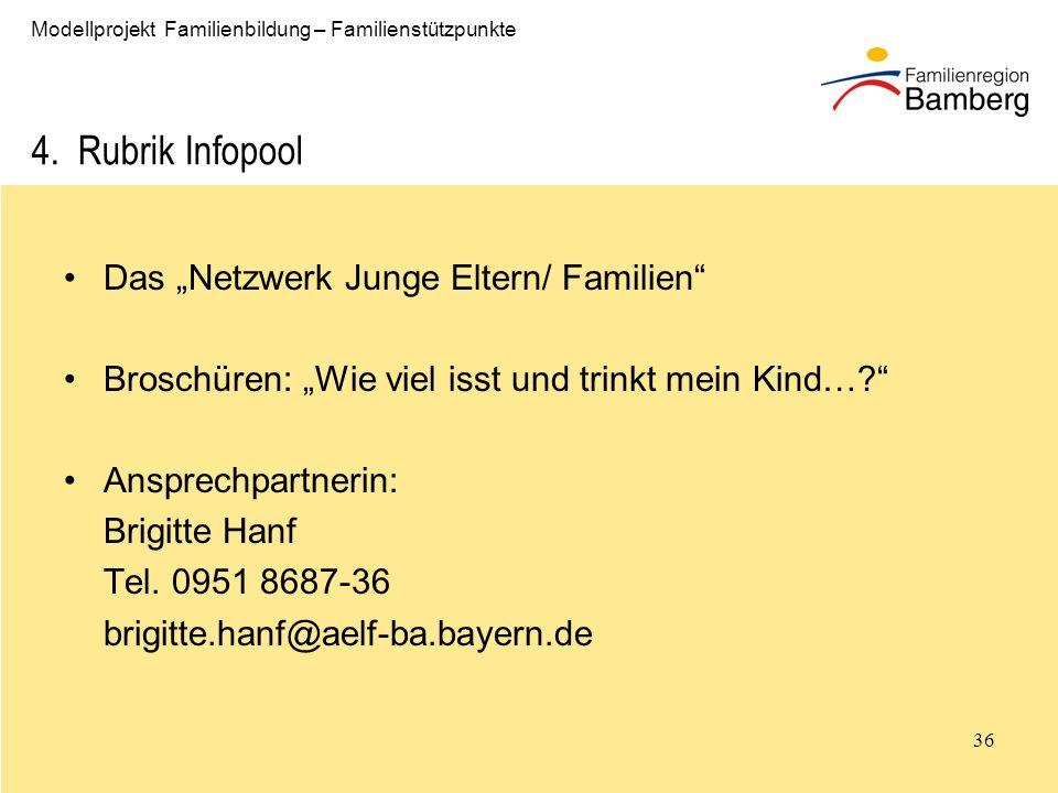 """4. Rubrik Infopool Das """"Netzwerk Junge Eltern/ Familien"""