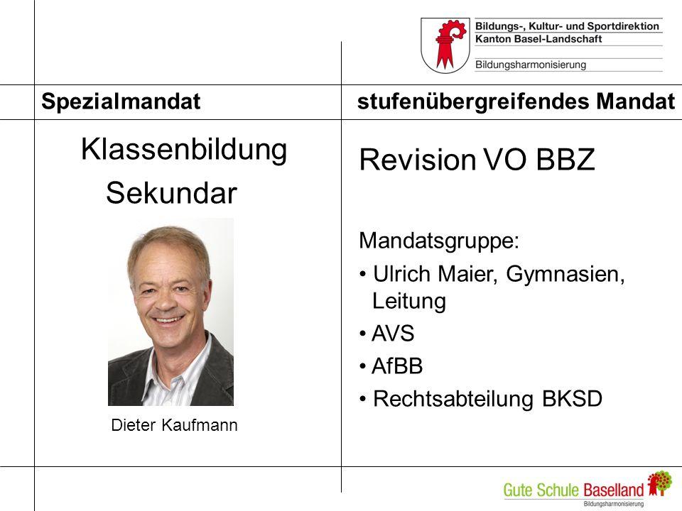 Klassenbildung Revision VO BBZ Sekundar stufenübergreifendes Mandat