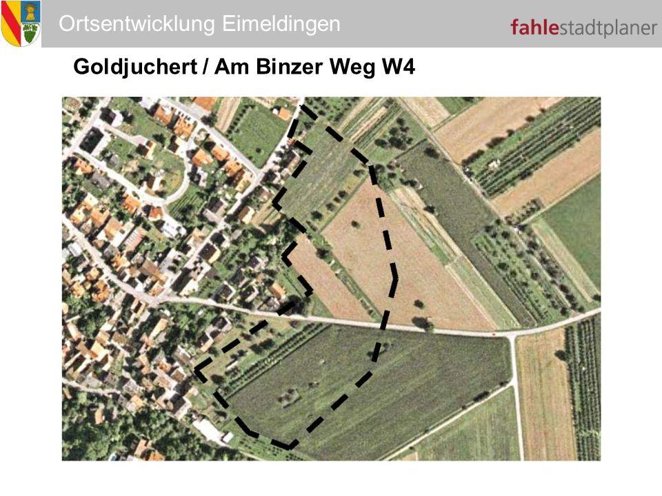 W4 Goldjuchert / Am Binzer Weg W4