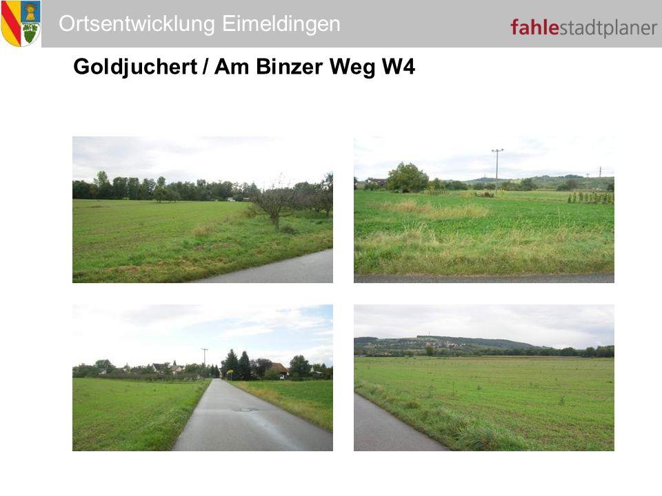 Goldjuchert / Am Binzer Weg W4