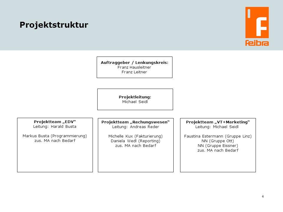 Projektstruktur Auftraggeber / Lenkungskreis: Franz Hausleitner