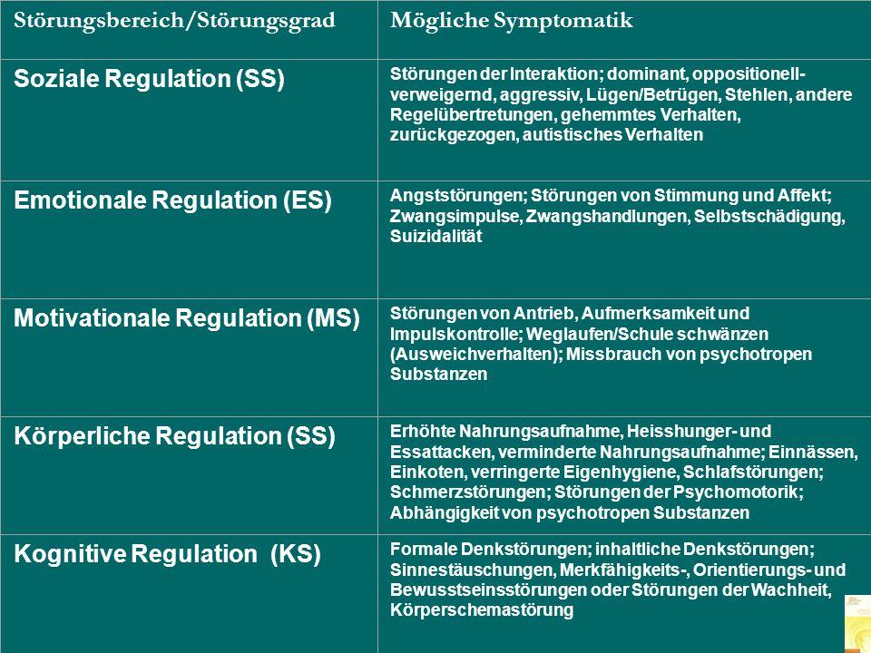 Störungsbereich/Störungsgrad Mögliche Symptomatik