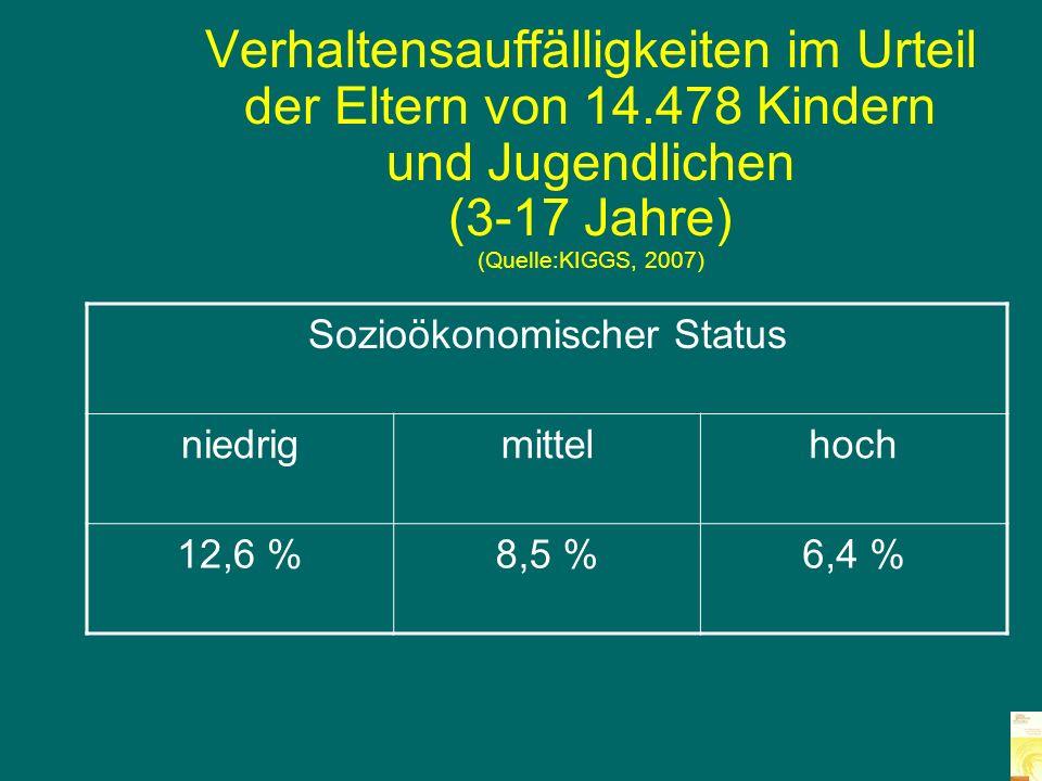 Sozioökonomischer Status