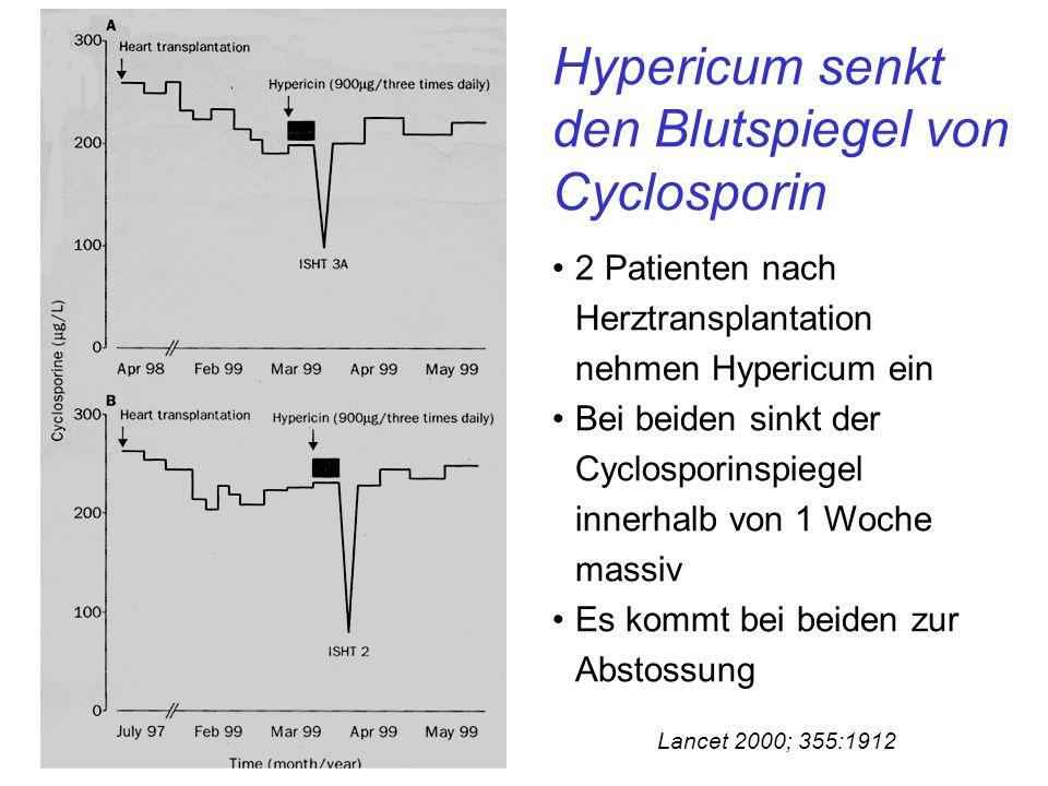 Hypericum senkt den Blutspiegel von Cyclosporin