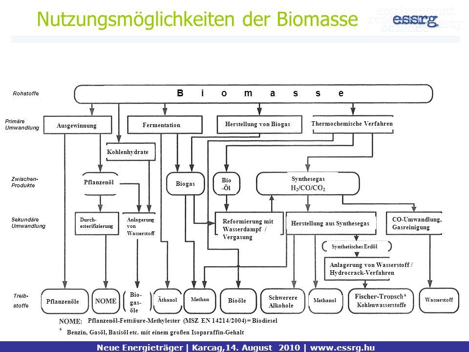 Nutzungsmöglichkeiten der Biomasse