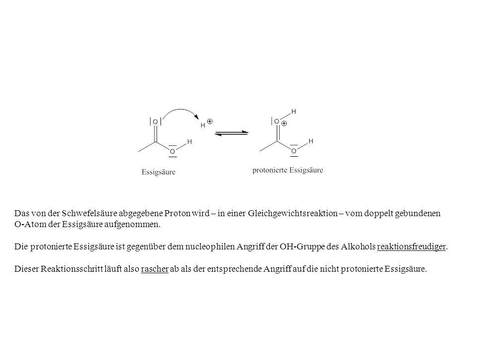 Das von der Schwefelsäure abgegebene Proton wird – in einer Gleichgewichtsreaktion – vom doppelt gebundenen O-Atom der Essigsäure aufgenommen.