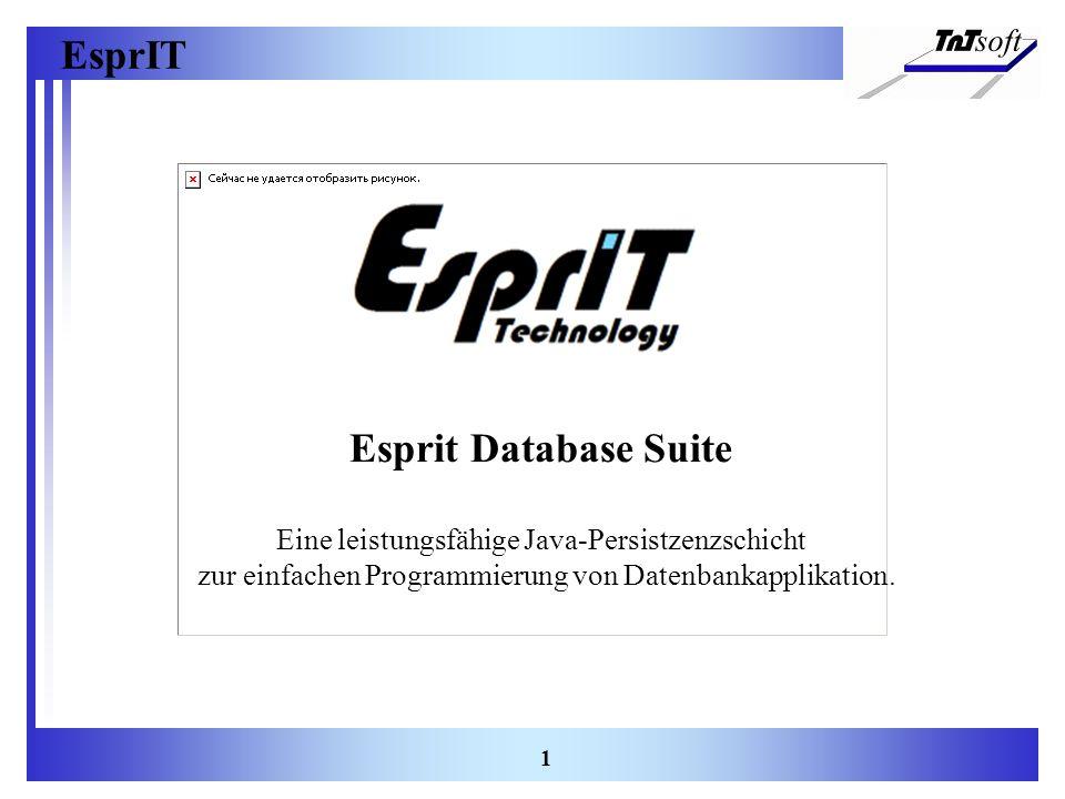 Esprit Database Suite Eine leistungsfähige Java-Persistzenzschicht zur einfachen Programmierung von Datenbankapplikation.